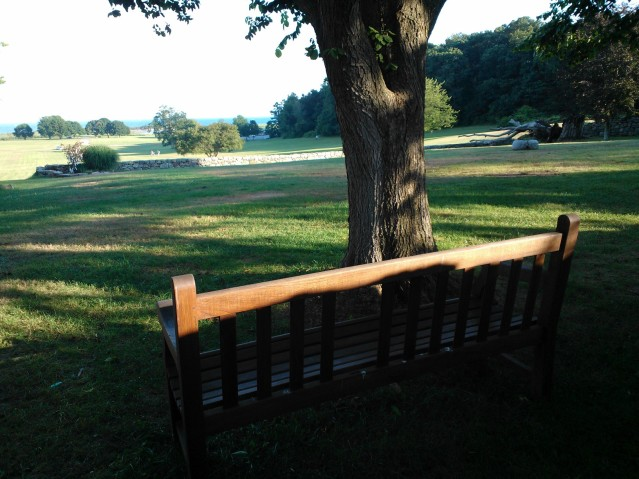 Looking down the Sunken Garden lawn from the ATCA Bench (commemorating the founding of the ATCA here at the O'Neill in 1974) toward the water in the distance. Image by Martha Wade Steketee.
